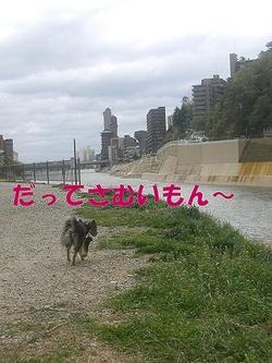 Hana_0419_4
