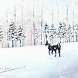 十勝牧場の冬