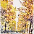 ベルリンの並木道