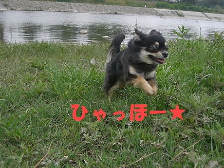 Hana_05181